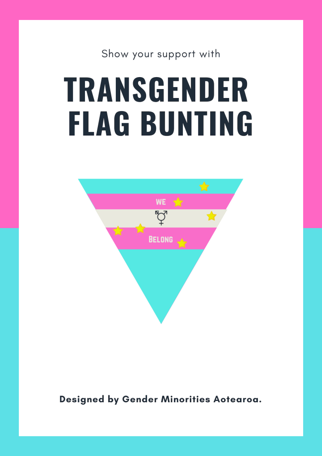 Transgender flag buntin.png